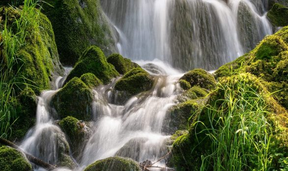 Cascading waterfall surrounded by moss covered rocks and vibrant green vegitation