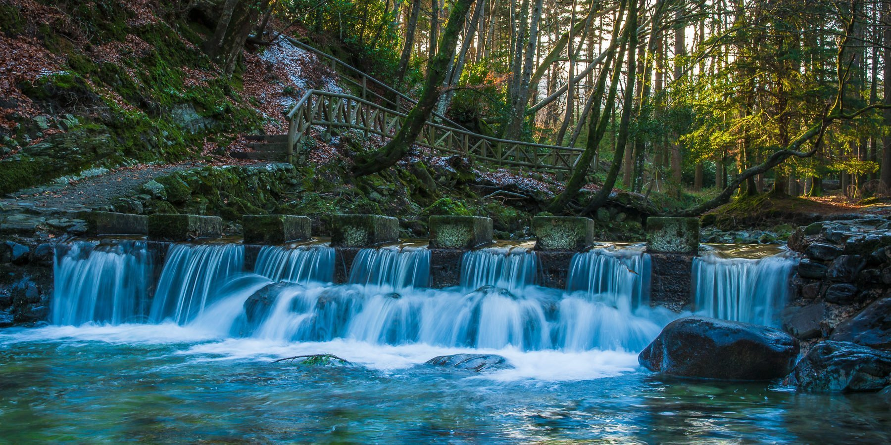 Stepping stones crossing a small waterfall in a forest